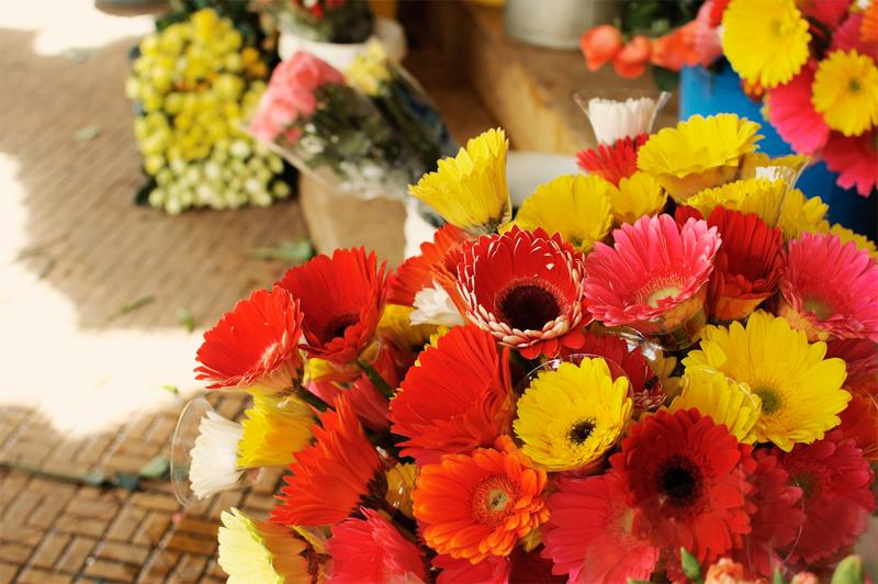 Flowers in Da Lat central market, Vietnam