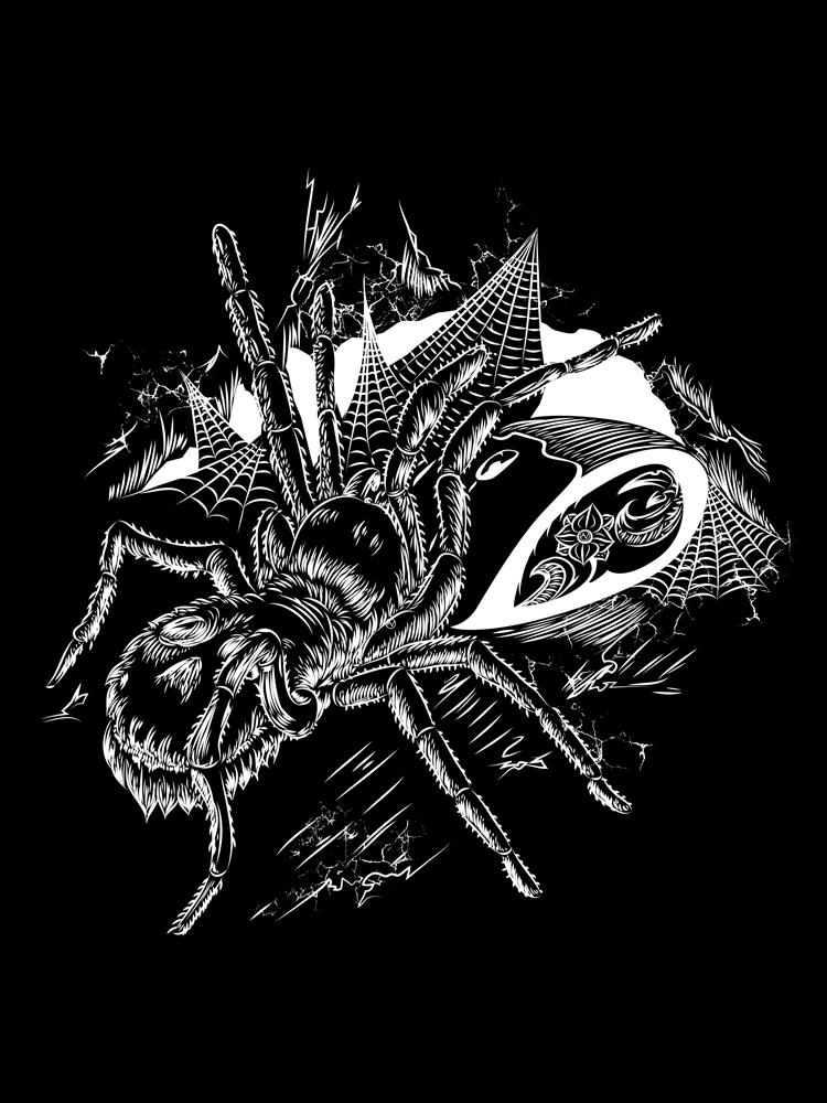 Tarantula drawing digital doodle