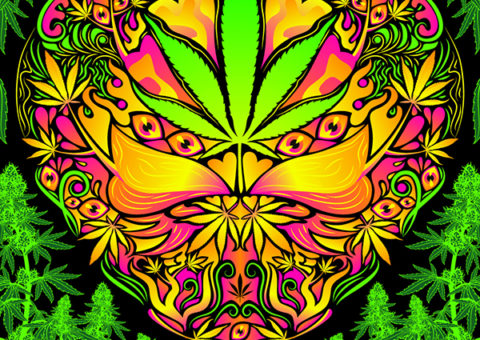 Cannabis Love Psychedelic Design
