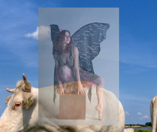 Transparent image of a fairy sitting on a cow