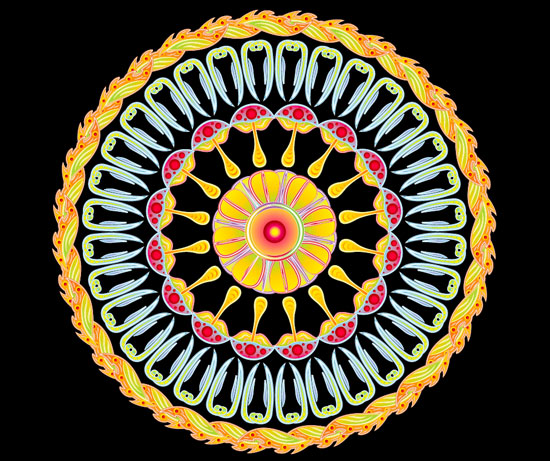 Psychedelic vector mandala tutorial by Andrei Verner