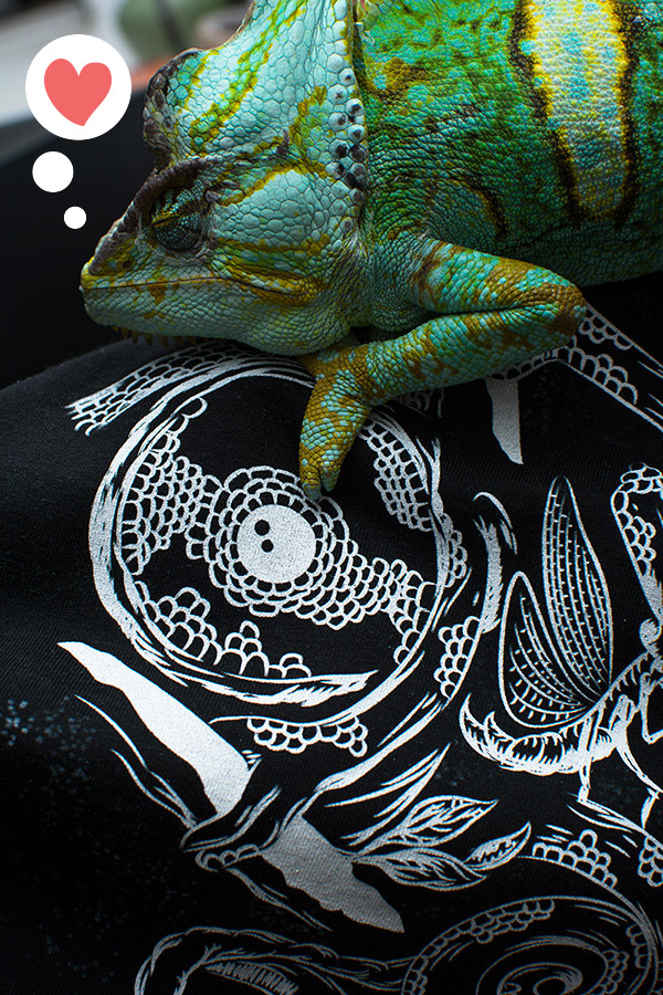Pets I will not own t-shirts - Chameleon
