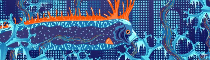 Frozen Corals Web-Cast 02