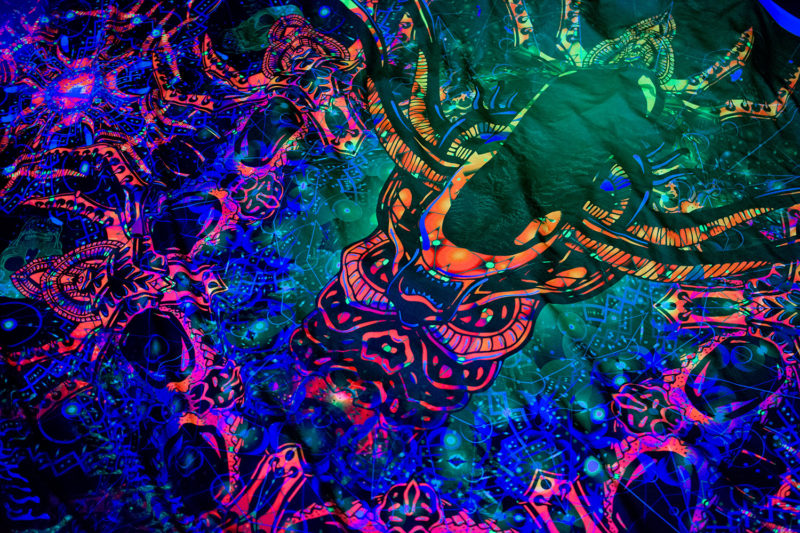 Alien Enlightenment Psychedelic UV-reactive Tapestry Backdrop