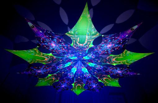 Alien Enlightenment - Trippy Alien & Alien Galaxy Design - UV-Reactive Canopy