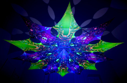 Alien Enlightenment - Trippy Alien & Space Skulls Design - UV-Reactive Canopy