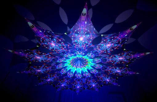Alien Enlightenment - Alien Galaxy Design - UV-Reactive Canopy