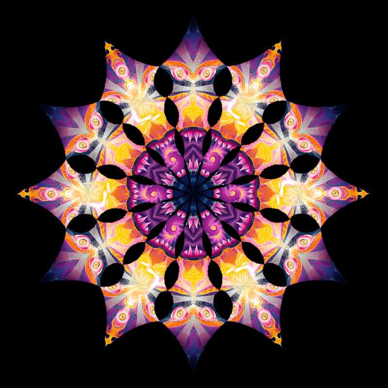 Frozen Corals - Buddha&Demon - Design Top View - Psychedelic UV-Reactive Canopy - 12 Petals Set