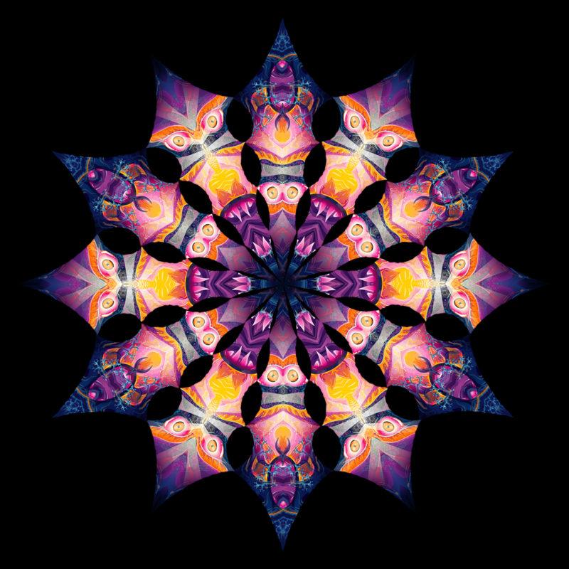 Frozen Corals - Corals&Demon - Design Top View - Psychedelic UV-Reactive Canopy - 12 Petals Set