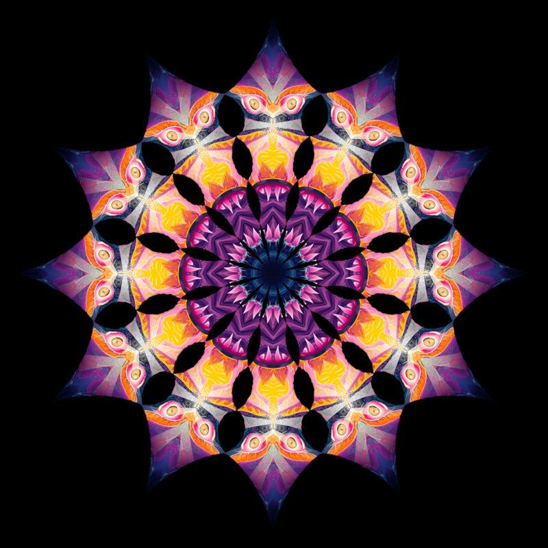 Frozen Corals - Demon - Design Top View - Psychedelic UV-Reactive Canopy - 12 Petals Set