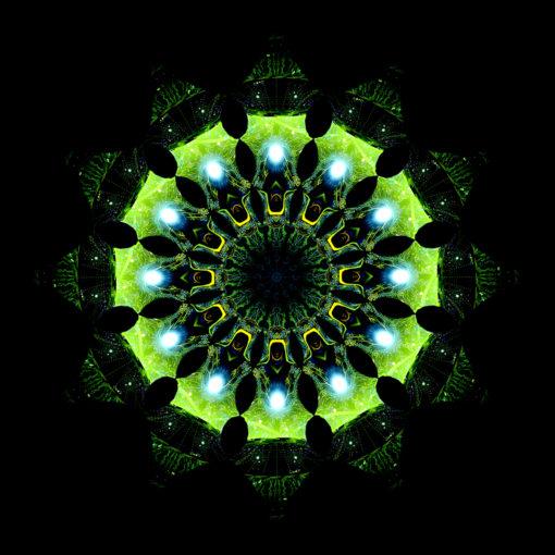 Enlightenment - Green Adept - Psychedelic UV-Reactive Canopy