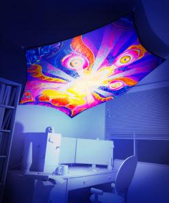 Frozen Corals - Hexagon - Stretchable UV-Print on Lycra Design - 3D Interior Preview