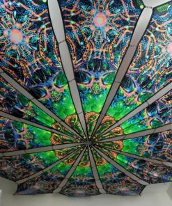 Alien Enlightenment - Alien Galaxy Design - UV-Reactive Canopy - Regular Light Photo