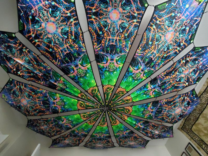 Alien Enlightenment - Alien Galaxy Design - UV-Reactive Canopy - Regular Light Photo