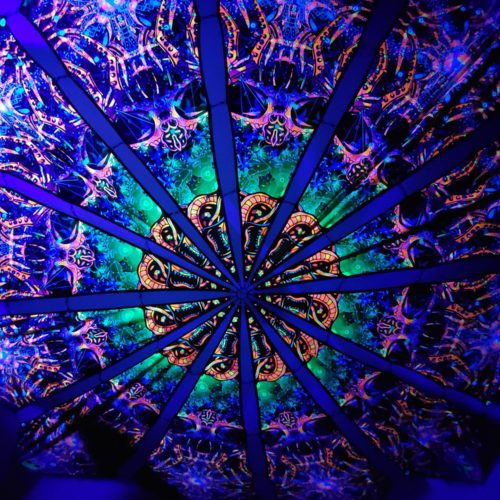 Alien Enlightenment - Alien Galaxy Design - UV-Reactive Canopy - UV Light Photo