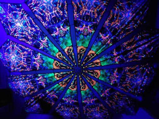 Alien Enlightenment - Alien Galaxy Design - UV-Reactive Canopy - UV Light Photo
