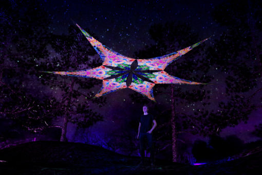 DMT-Fish - Psychedelic UV-Reactive Ceiling Decoration Canopy 6 Petals