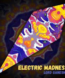 "Lord Ganesha - Psychedelic UV-Reactive Canopy - Petal Design - ""Electric Madness"""