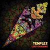 "Lord Hanuman - Psychedelic UV-Reactive Canopy - Petal Design - ""Temples"""