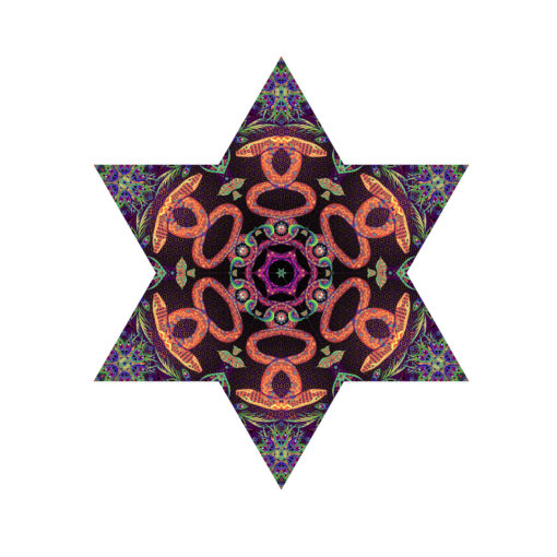 Jungle Snakes - Hexagram - UV-Canopy - Psychedelic Party Decoration - Flat Lay - Setup #1