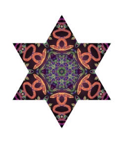 Jungle Snakes - Hexagram - UV-Canopy - Psychedelic Party Decoration - Flat Lay - Setup #2