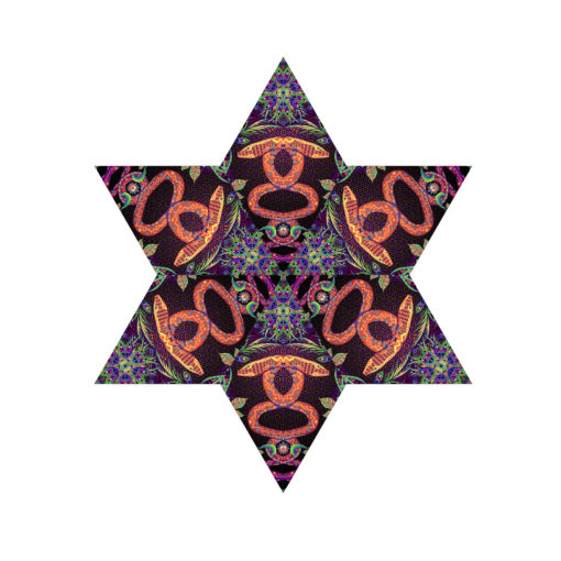Jungle Snakes - Hexagram - UV-Canopy - Psychedelic Party Decoration - Flat Lay - Setup #3