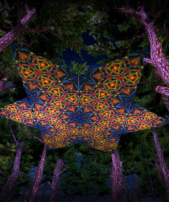 Reincarnation 2 UV-Triangles - TR02 - 12 Pieces - UV-Reactive Psychedelic Party Decoration - 3D Preview