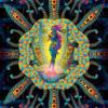 Cyber Venus 2020 - Fluorescent UV-Reactive Backdrop Trippy Tapestry