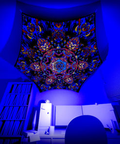 Kali in Acidland - Hexagon HX01 - Psychedelic UV-Reactive Canopy Part - 3D preview
