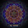 Kali in Acidland - Hexagon Design - HX02 - UV-Print on Stretchable Lycra